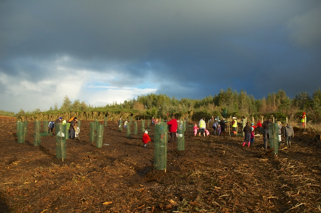 A Forest School for Broadford and Strath